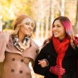 Two girls having a pleasant talk while walking the autumn park. — Stock Photo #83375120