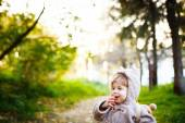 Funny Shy Little 2 year old Boy Giggling — Stock Photo