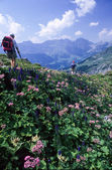 Turistas de senderismo en las montañas — Foto de Stock