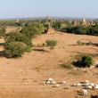 Panoramic view at the archaeological site of Bagan — Stock Photo #59025573