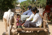 Family on a cow-drawn carriage — Fotografia Stock