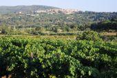 Popular Village of Capoliveri on Elba Island,Tuscany — Stock Photo