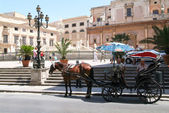 Horse carriages on Piazza Pretoria with magnificent fountain — Stock Photo