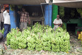 Indian vendors with banana stall in the Devaraja fruit market — Stock Photo