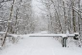 Snowy landscape in Engelberg  — ストック写真