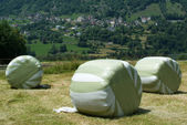 Landscape with hay bales at Olivone — Stock Photo