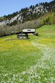 Rural landscape at Engelberg — Zdjęcie stockowe