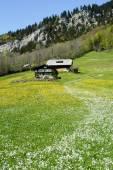 Rural landscape at Engelberg — Stock Photo