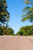 Empty dirt road rising against trees and sky — Stockfoto