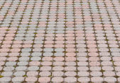 Octagonal paving stone pattern — Stock Photo