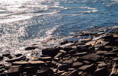 Brown rocky shore and water reflecting sunlight. — Stok fotoğraf