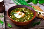 Botvinia, traditionele Russische koude soep — Stockfoto