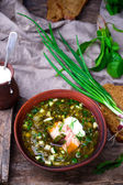 Botvinia ,traditional Russian cold soup — Stockfoto
