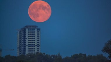 Full moon — Stock Video