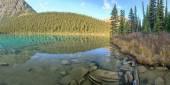 Nature Canada — Stock Photo