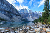 Nature Canada — Stock fotografie