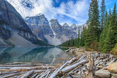 Nature Canada — Stock Photo