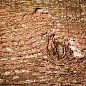 Alte holz textur-hintergrund — Stockfoto