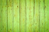 Green wood texture background  — Stock Photo