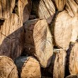 Stack of chopped fire wood — Stock Photo #67982419