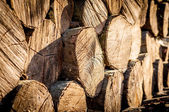 Stack of chopped fire wood — Stock Photo