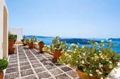 Cosy patio with flowers in Fira town on the island of Thera(Santorini), Greece. — 图库照片