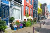 Amsterdam residential area in the down town with natural flowers outside the buildings. Netherlands. — Stock Photo