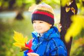 Happy boy  joyful and blissful holding colorful leaves in autumn — Stock Photo