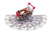 Money  in Shopping Cart Isolated On White Background — Stock Photo