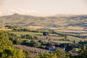 Landscape in Val d'Orcia — Stock Photo