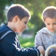 Young brothers playing on a sunny day in a park. — Stock Photo #56634899