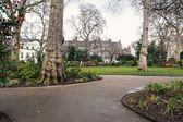 Park in Bedford Square — Photo