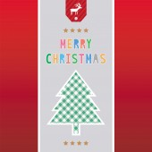 Merry Christmas greeting card41 — Stock Vector