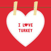 I lOVE TURKEY5 — Stock vektor