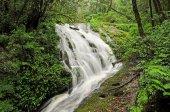 Waterfall at Kew Mae Pan — Foto de Stock