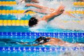 Butterfly swimming race — Photo