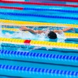 Butterfly swimming race — Stock Photo #63321491