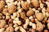Variety nuts — Stock Photo