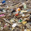 Water pollution. wastes on the beach — Stock Photo #68163037