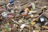 Water pollution. wastes on the beach — Stock Photo