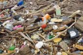 Vattenföroreningar. avfall på stranden — Stockfoto