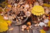 Fresh and preserving  in glass jar mushrooms with spices — Stock Photo
