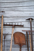 The old rusty tools for gardening — Stock Photo