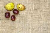 Sweet chestnuts decor — Stok fotoğraf