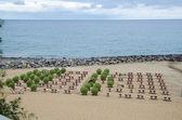 Empty sun beds at beach — Stock Photo