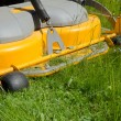 Detail of a riding lawn-mower — Stock Photo #75149523