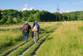 Two men with backpacks travel path — Stock Photo