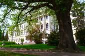 Lviv Polytechnic National University — Stock Photo