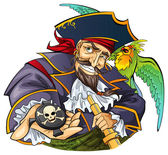 Cartoon pirate with parrot — Stock Vector