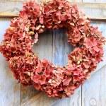 Autumn wreath of faded hydrangea flowers — Stock Photo #55955285